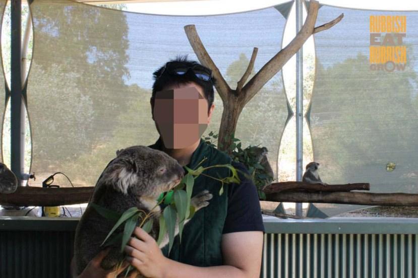 Cohunu Koala Park Perth