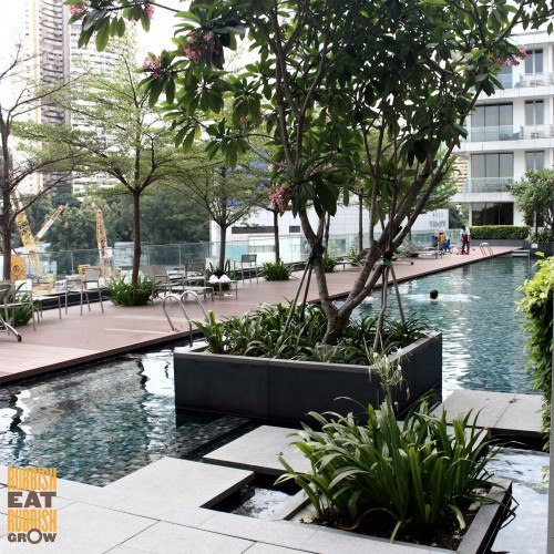 dorsett singapore review swimming pool