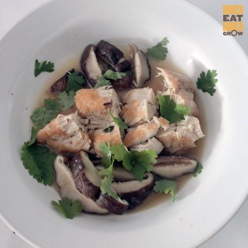 gordon ramsay chicken Fricassee recipe
