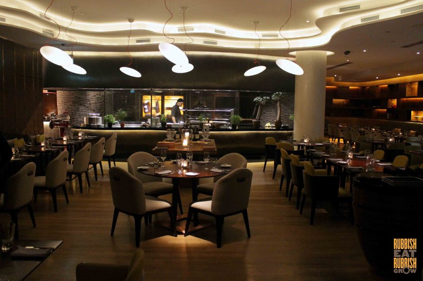 opus-hilton-review