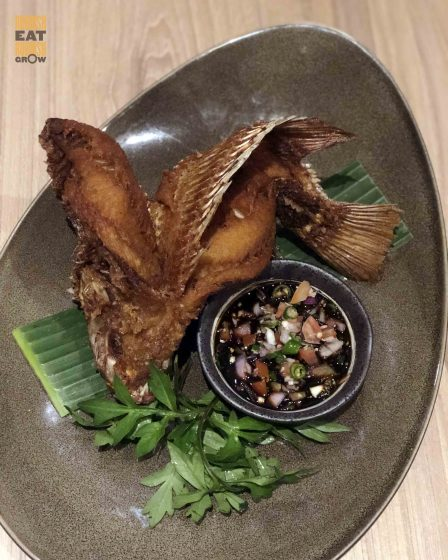 Dancing Fish Tangs Plaza Kl S Indonesian Restaurant Opens First Outlet In Singapore Where You Can Find Pucuk Paku Jungle Fern Rubbish Eat Rubbish Grow